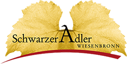 Hotel Schwarzer Adler Wiesenbronn
